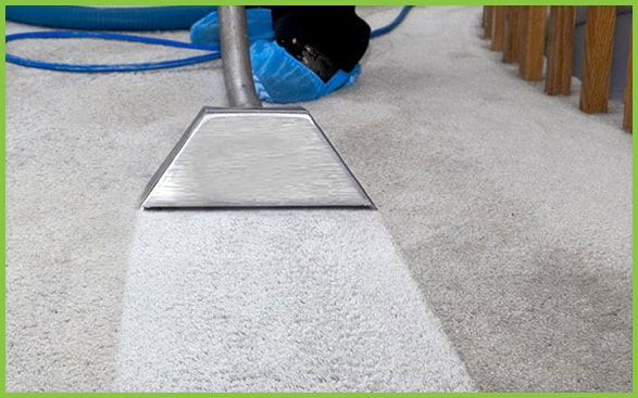 Carpet Cleaning Spring 20 Off Eco Friendly Service Near Me